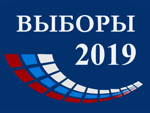 Инструкции получены: чему учат наблюдателей-навальнистов в Петербурге